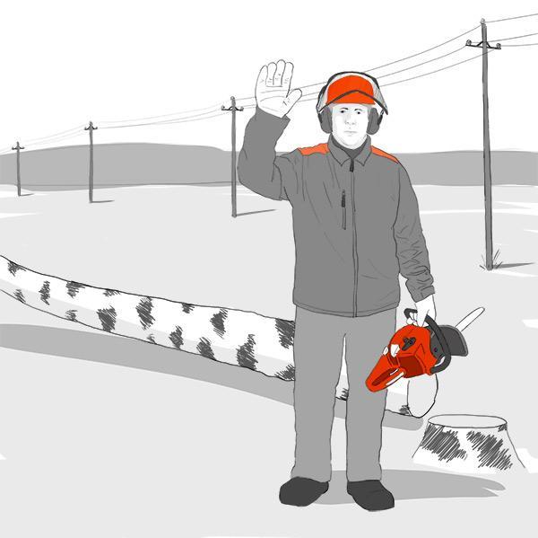 Tarjoamme puunkaatoapua jotta vältytään sähkökatkoilta ja hengenvaarallisilta tilanteilta.